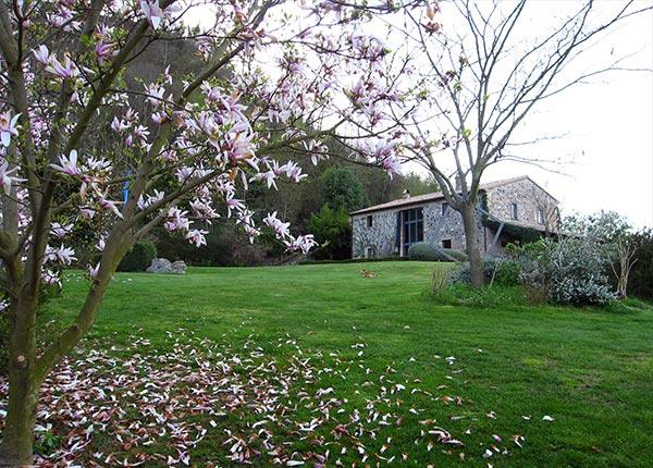 magnolia-giardino-vivai-michelini